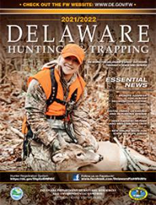 Delaware Hunting