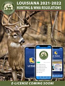 Louisiana Hunting