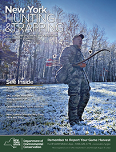 New York Hunting & Trapping Digest