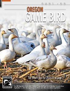Oregon Game Bird