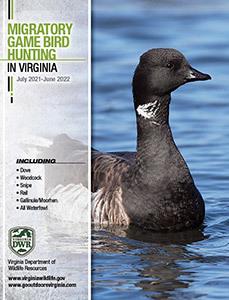 Virginia Game Bird