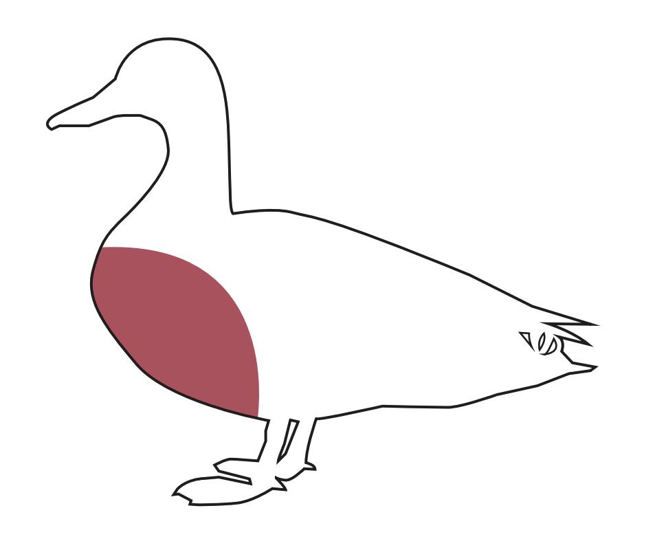 Waterfowl Breast